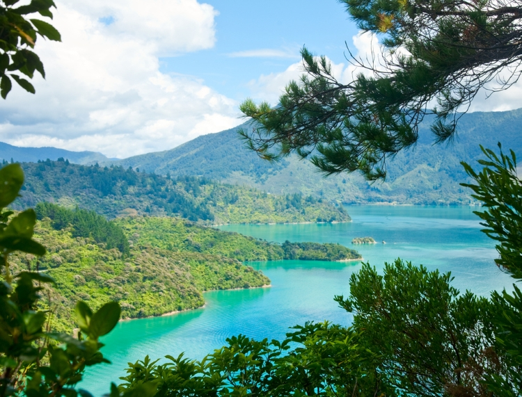 3.) Queen Charlotte Track
