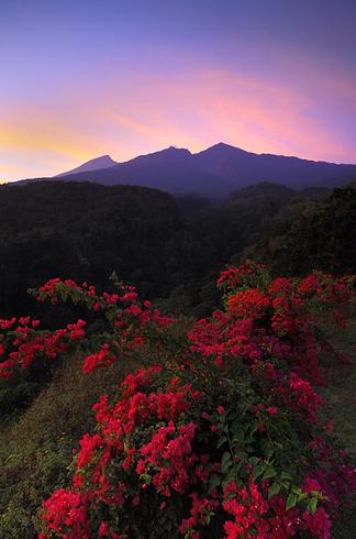13.) Gunung Rinjani 3 Original