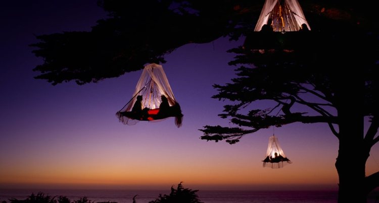 11.) Tree Camping
