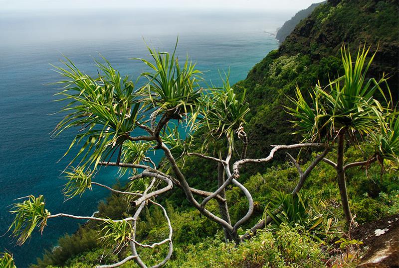14 - 25 Most Treacherous Hiking Trails in the World - Kalalau Trail, Hawaii