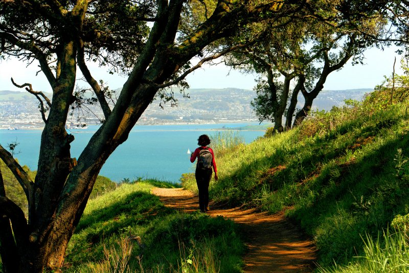 2) Angel Island State Park - 10 Amazing State Parks In California That Will Blow You Away