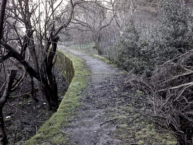 3) Niles Canyon Road - Haunted hikes in california