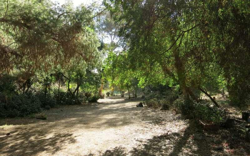 Corralitas Red Car Trail