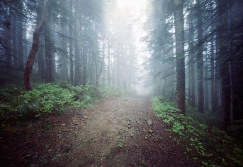 2) Silver Star Mountain - Haunted Hiking Trails In Washington