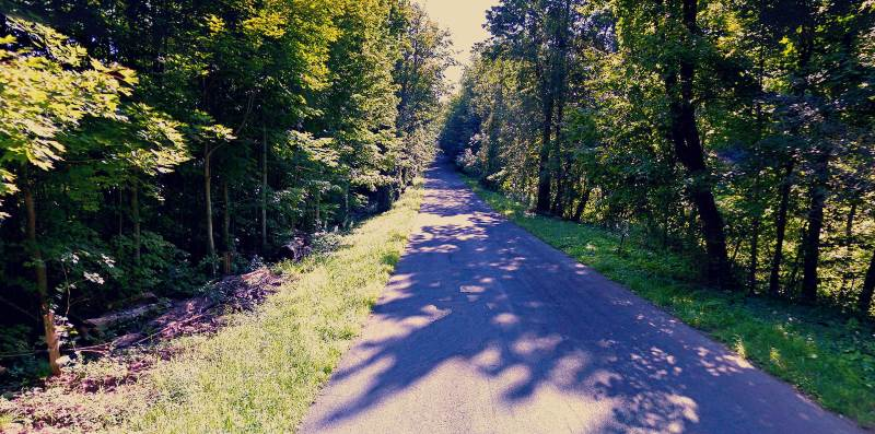 4 - Gray Road 10 Most Haunted Hikes In New York