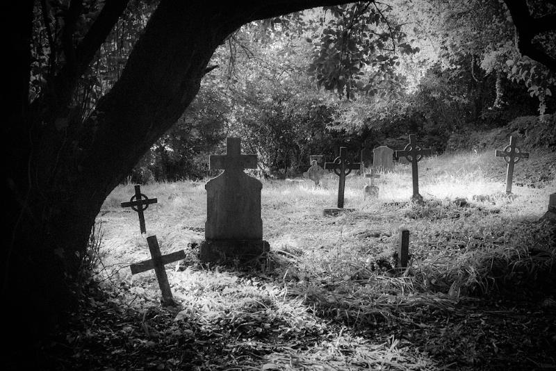13) Illinois - Bachelor's Grove Cemetery, Bremen Township - Haunted Hiking Trails 50 States
