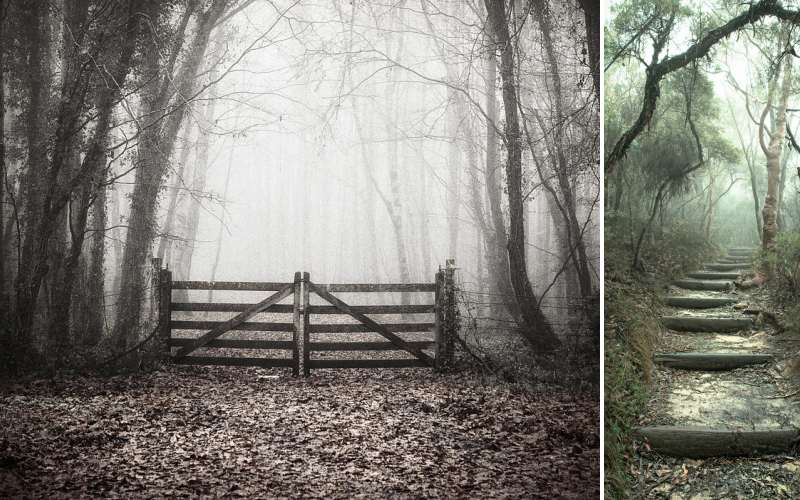 The Most Haunted Hike In Each Of The 50 States
