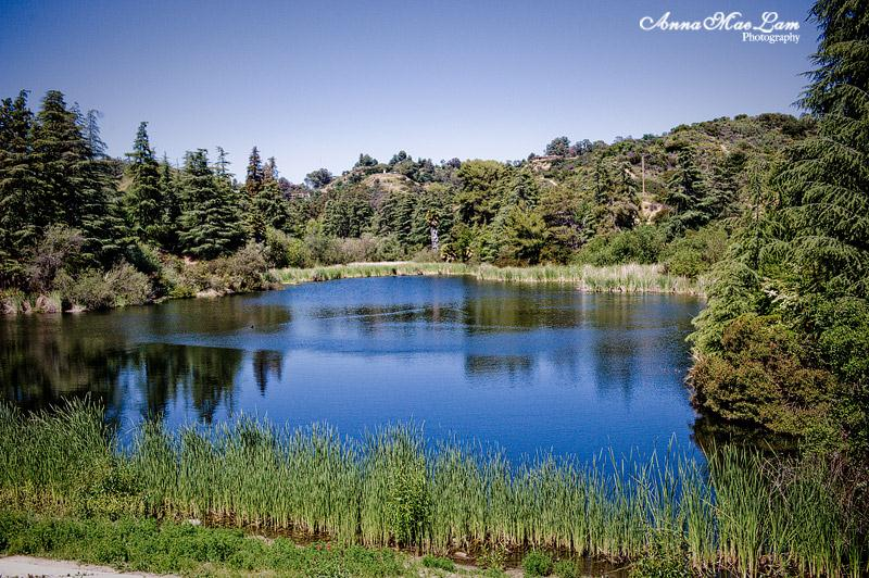 10) Franklin Canyon Reservoir Loop, Beverly Hills - 10 Out Of This World Hiking Trips In California