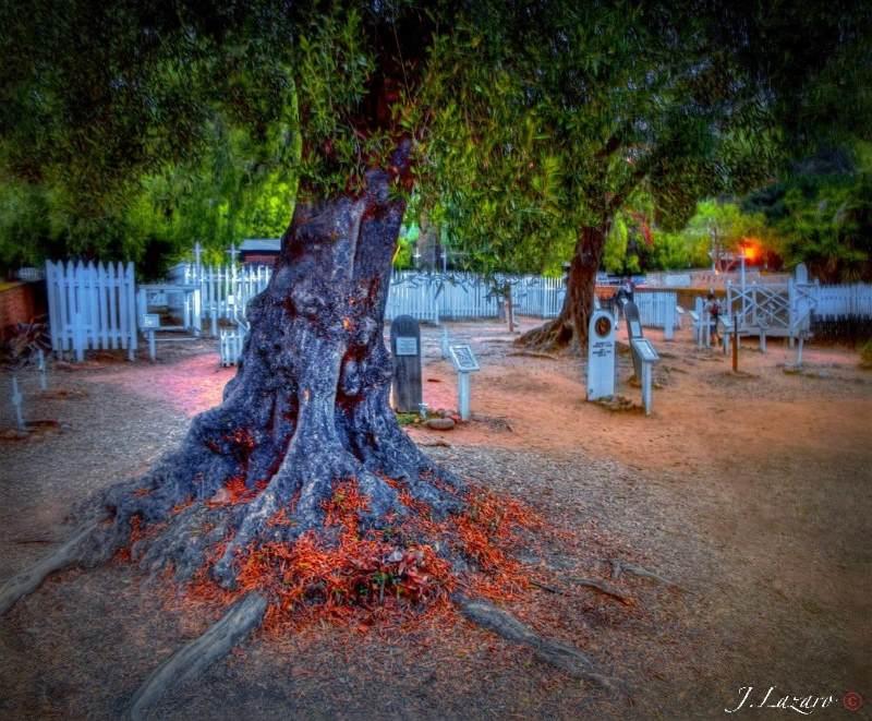 9 - El Campo Santo Cemetery, San Diego - 10 Haunted Cemeteries California