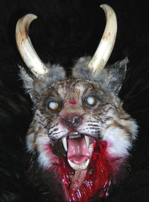 7 - Horned-Demon Cat - Paranormal Creatures