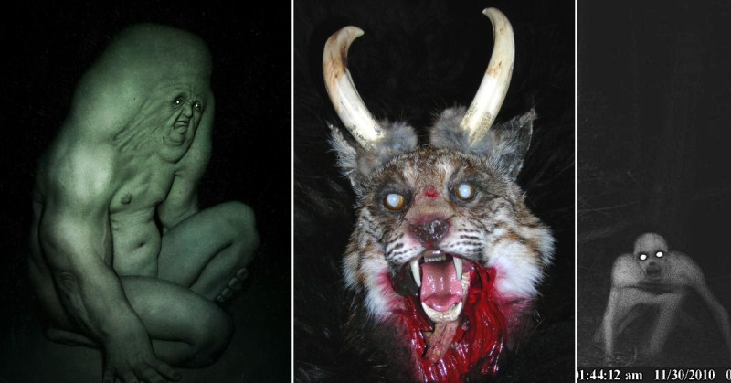 7 Terrifying Paranormal Creatures You've Never Heard Of