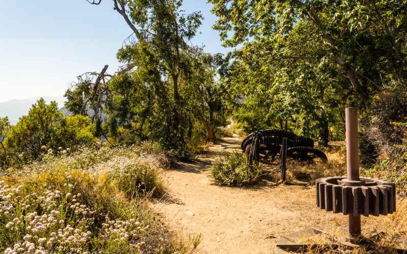 Haunted Forest in Altadena California