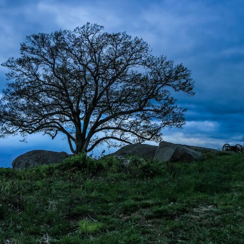 Lone tree at the haunted Devil's Den in Gettysburg Pennsylvania