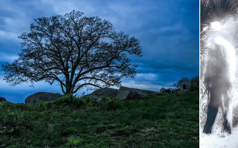 Lone tree and ghost at the haunted Devil's Den in Gettysburg Pennsylvania