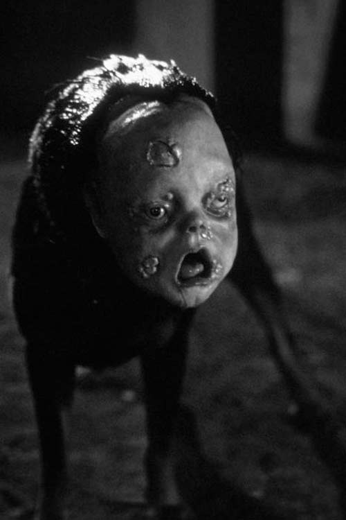 This creature has a disturbing face of a baby and the body of a dog. Really. It's one of the creepiest things reported in Diamond Bar.