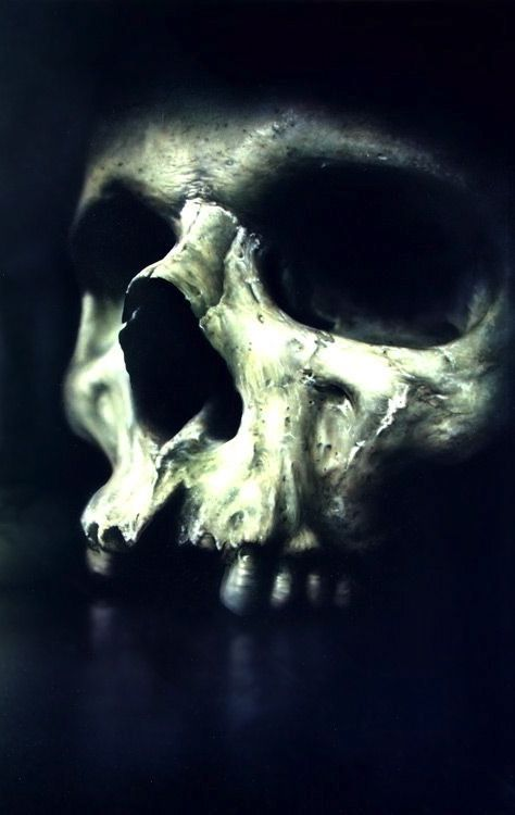A skull can mean a lot of different things to a lot of different people.