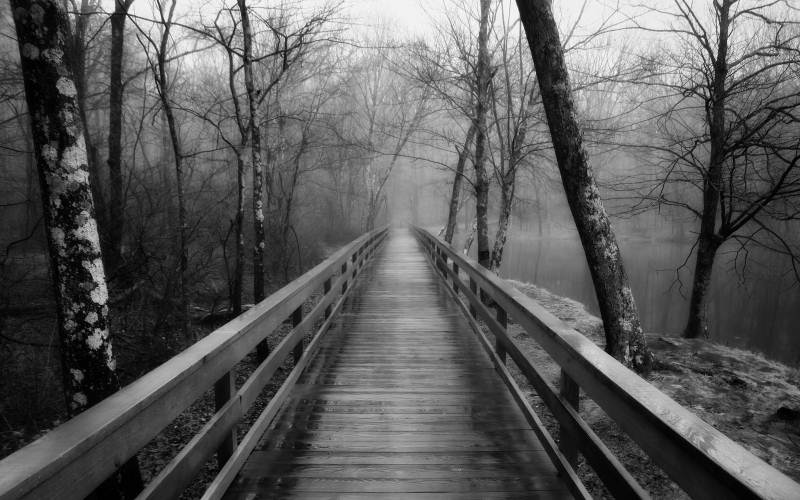 7 Creepy Waterfront Trails in SoCal Perfect for A Haunted Hike