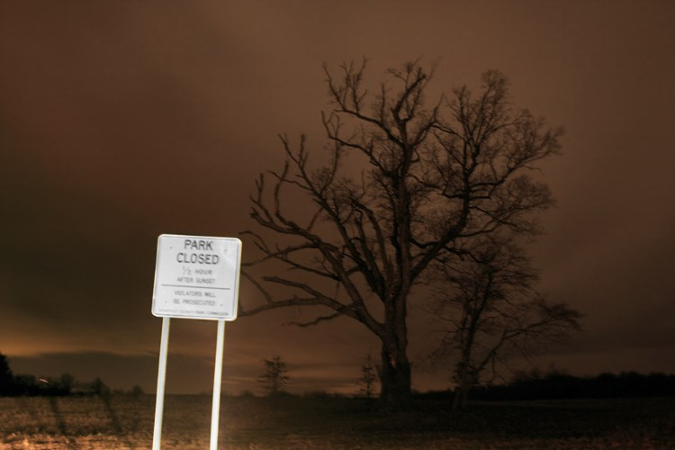 The New Jersey Devil Tree is linked to numerous murders and suicides