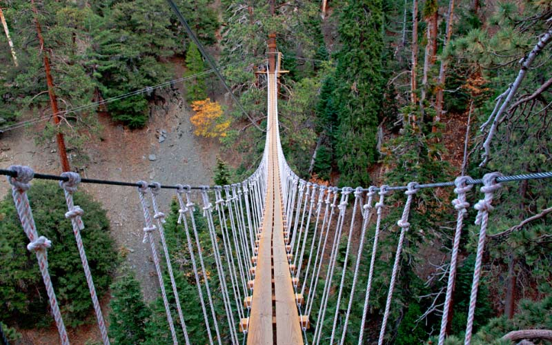 This suspended bridge in Wrightwood, California is absolutely terrifying when it's dark outside.