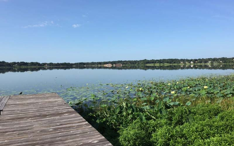 Lake Hollingsworth in Florida is worth the visit, if you're feeling brave at least.
