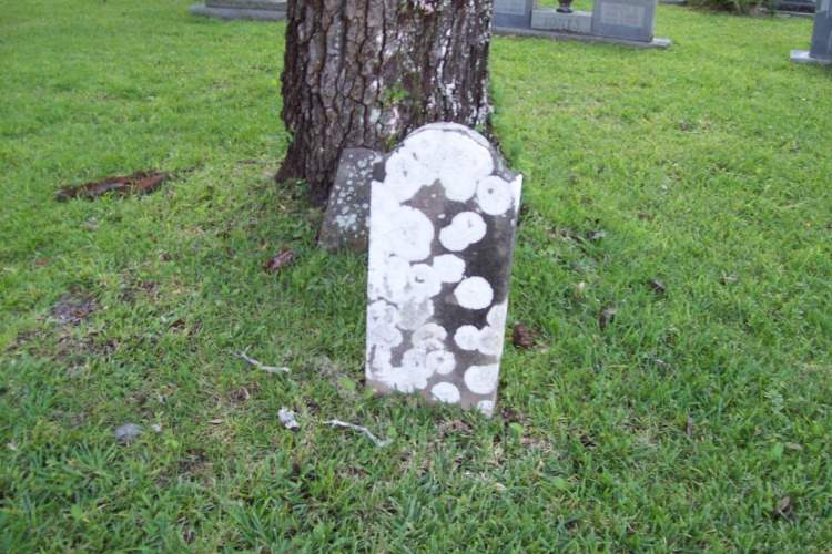 Rouse, the Orlando based cemetery was first established in 1871 by the Drawdy family