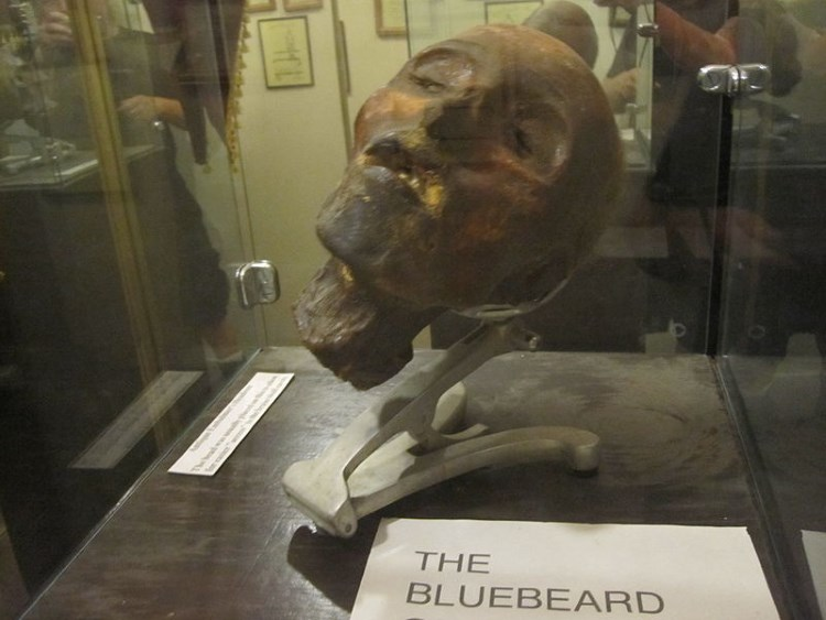 museum-of-death-head-display