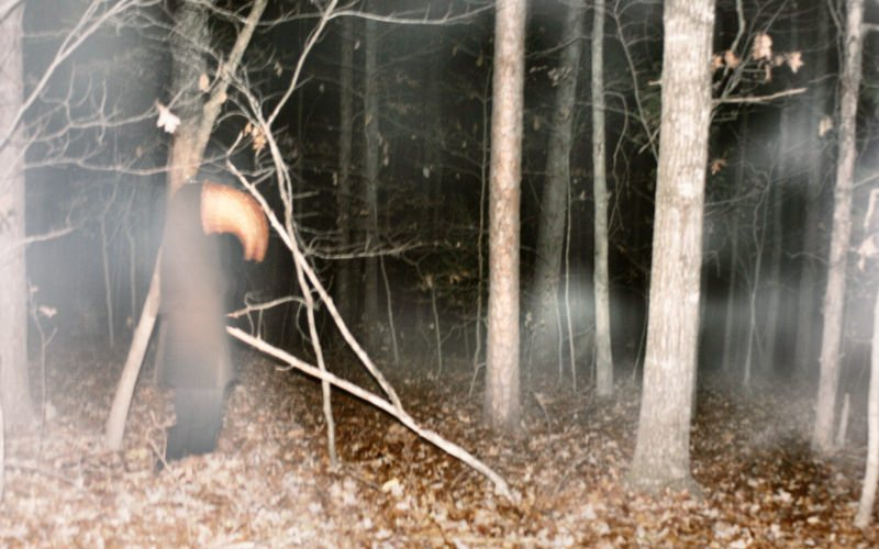 true-scary-story-terror-in-the-woods