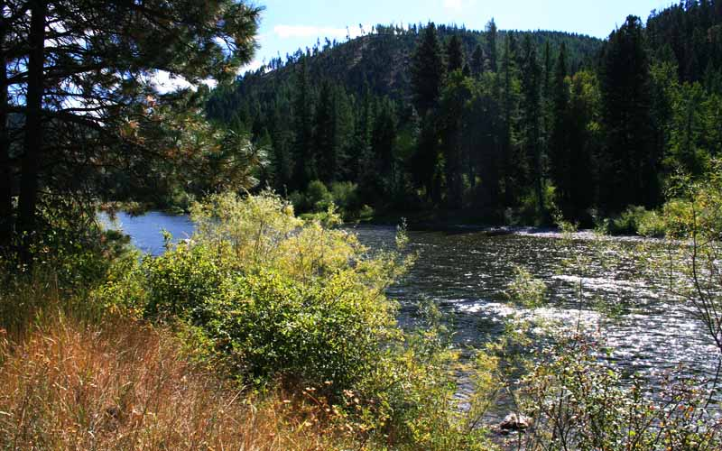Feather River – Butte County