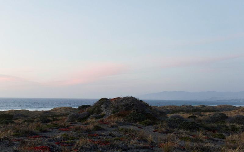 Bodega Dunes Campgrounds – Bodega Bay