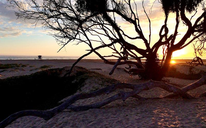 North Beach Campground – Pismo Beach
