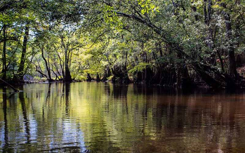 Choctawhatchee River, Caryville