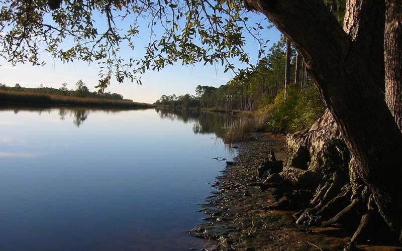 Ochlockonee River, Tallahassee