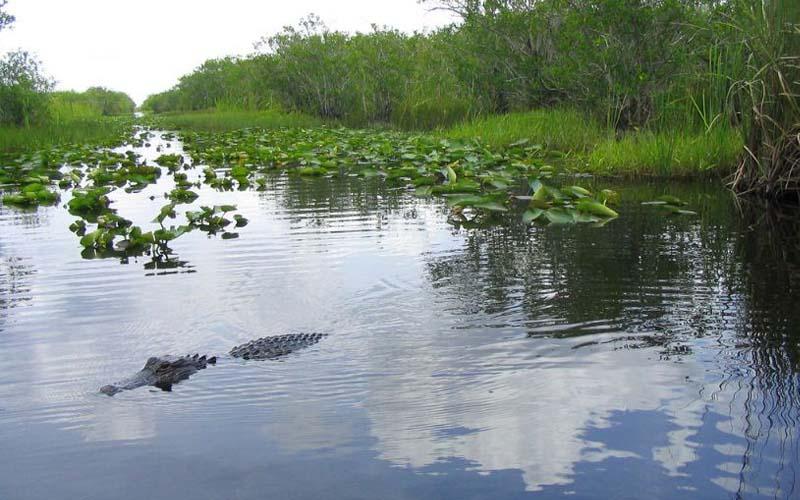 Miami River, Miami