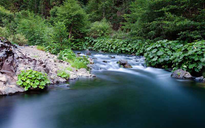 Mad River in Kneeland, California