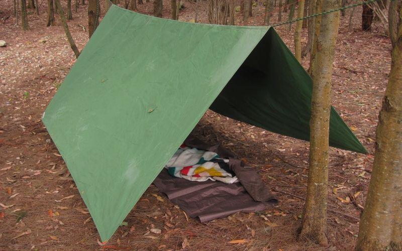 Basic A-Frame Tarp Shelter