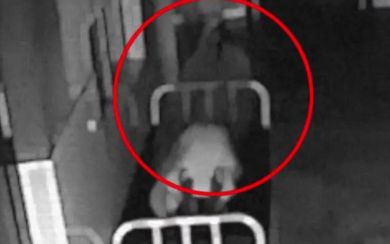 It looks like a ghost leaving a dead body.