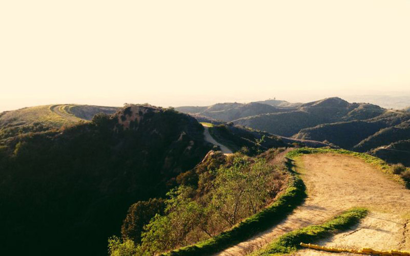 Turnbull Canyon in California