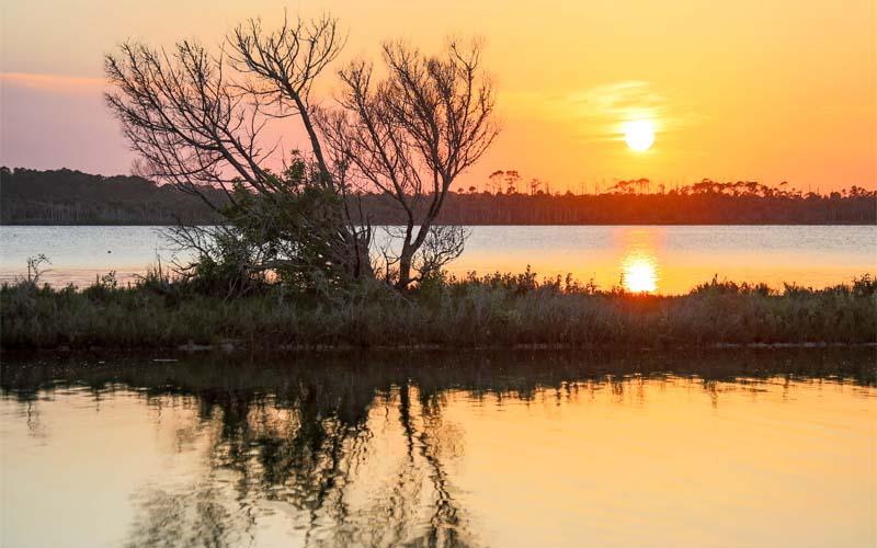 Tomoka River in Tomoka State Park, Daytona Beach, Florida