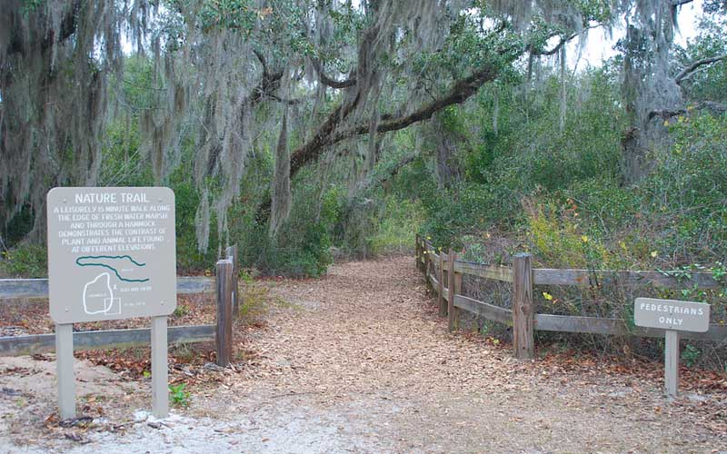Lake Griffin State Park in Fruitland Park, Florida