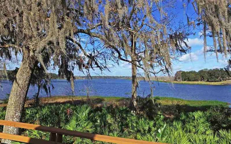 Wicked Spirits At This Florida Lake Will Have You Questioning Your Sanity