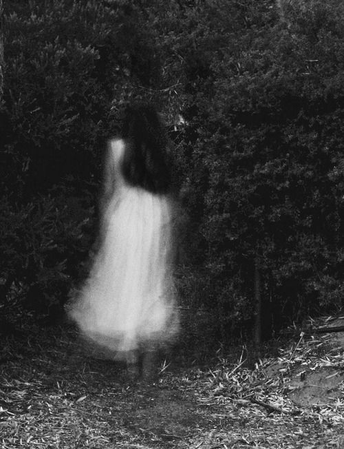 The Ghosts In The Garden Know Of The Evil That Lurks There