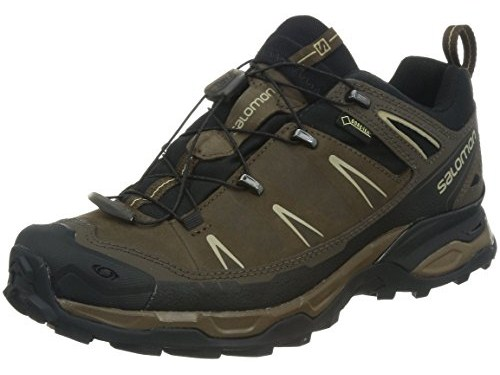 Salomon Men's X Ultra LTR GTX Hiking Shoe