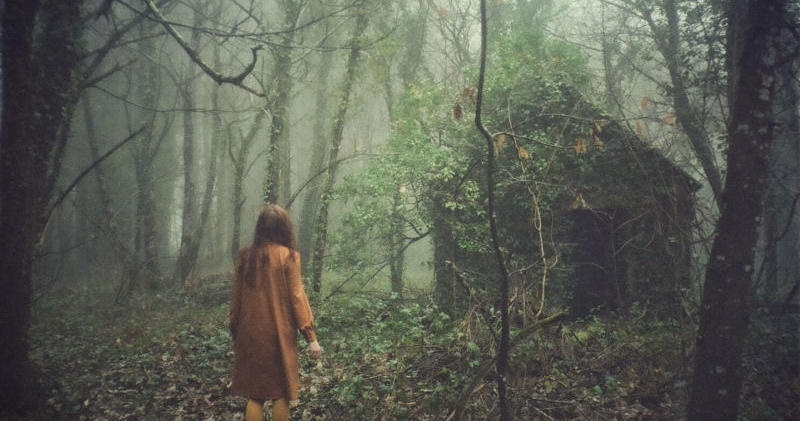 10 Scariest Horror Movies That Take Place In The Woods